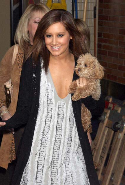 ashley tisdale  y su perro