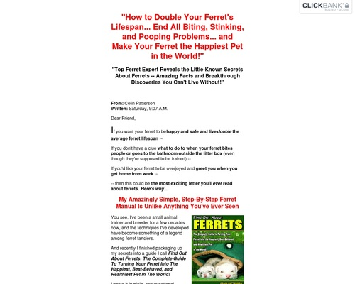 Find Out About Ferrets.