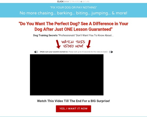 "Dog Training Secrets ""they"" Don't Want You To Know About"