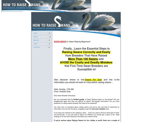 How To Raise Swans